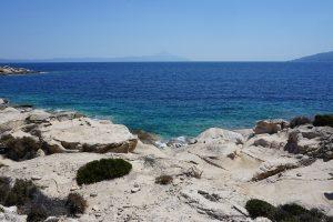 La Universidad de Almería da impulso a sus jóvenes investigadores del mar