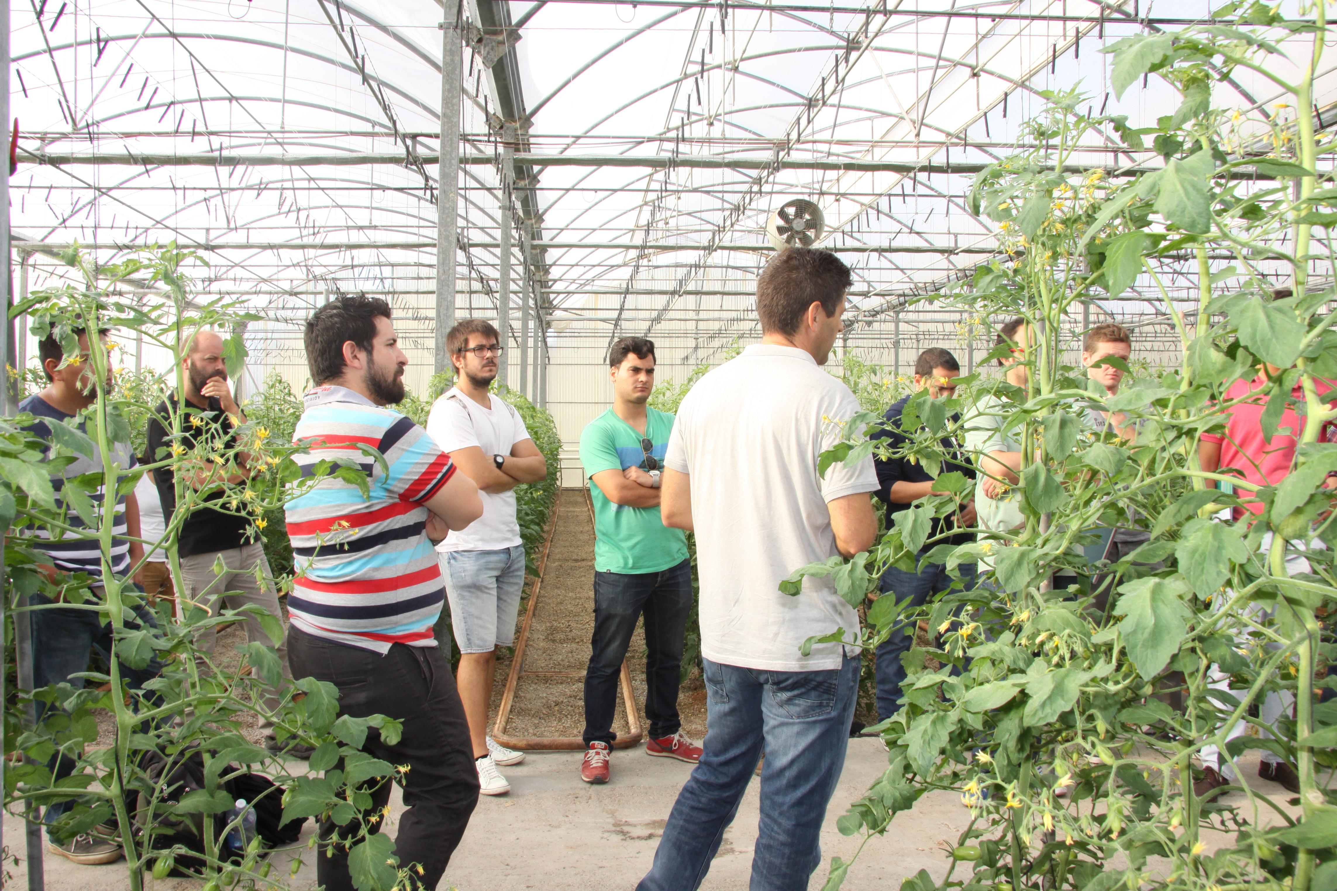 La UAL oferta cuatro Training Network Courses del ceiA3 sobre temática agraria