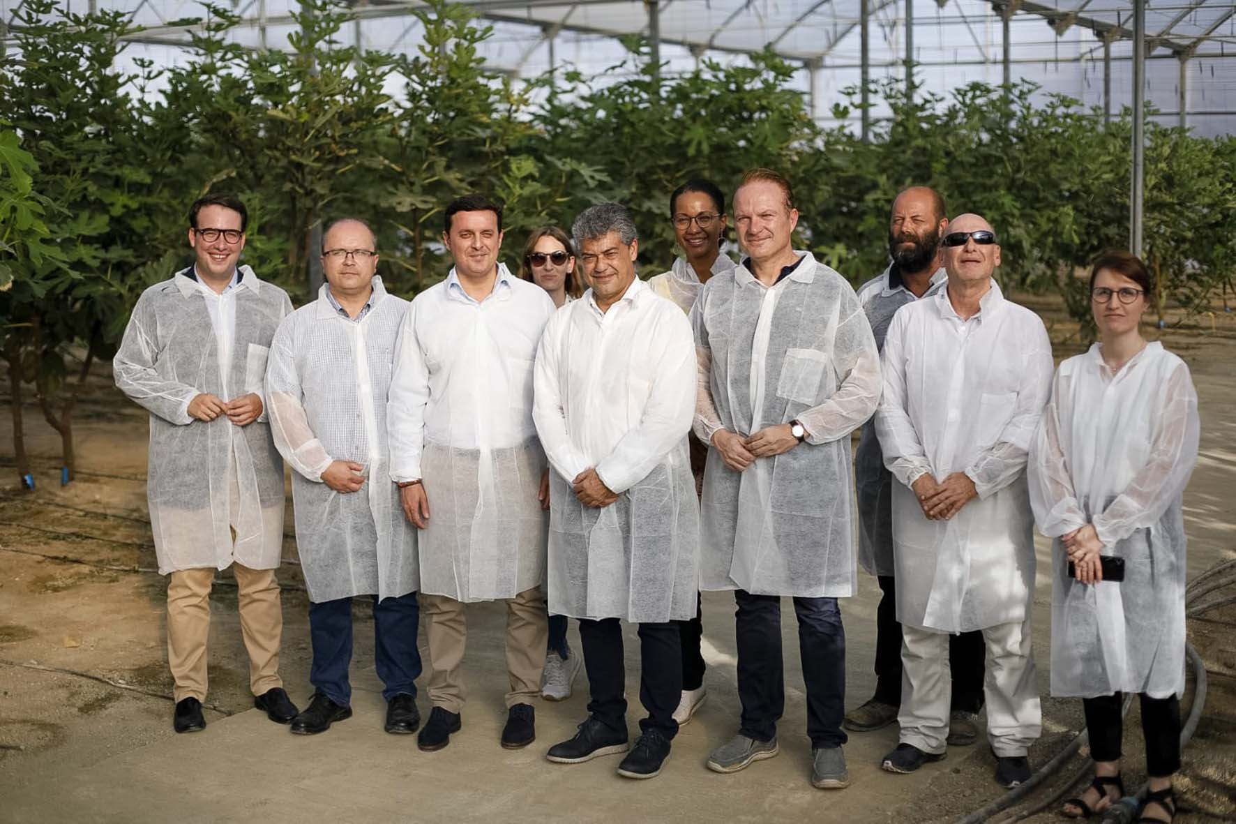 UAL y Diputación impulsan el primer cultivo sostenible de higueras bajo plástico