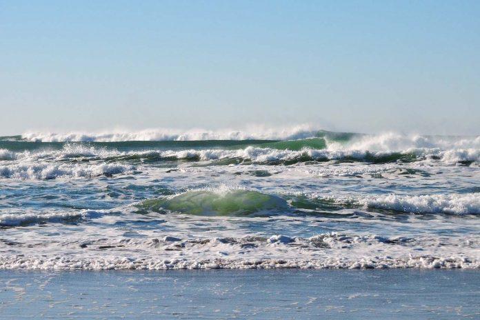 La UAL colabora en un estudio sobre la presencia de la COVID-19 en las playas almerienses