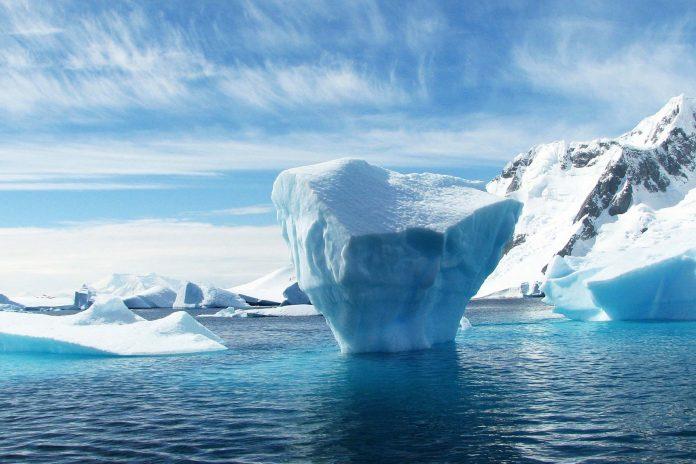 El CECOUAL se suma a la defensa de la Antártida 'con liderazgo femenino' que realiza la red Homeward Bound