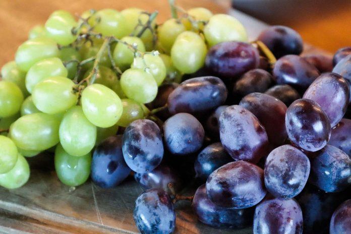 La UAL participa en la mejora de la conservación de la uva de mesa hasta su llegada al consumidor final