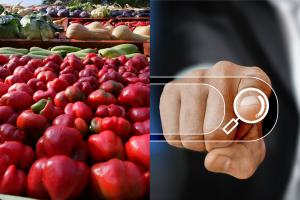 El CIDES lanza por primera vez en España un curso de especialista en asesoría a cooperativas agroalimentarias