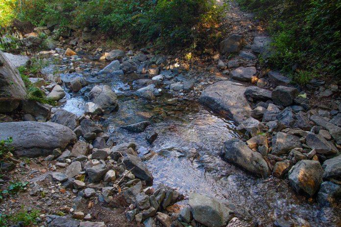 La UAL participa en un estudio mundial sobre los efectos de la diversidad en el funcionamiento de los ríos de cabecera